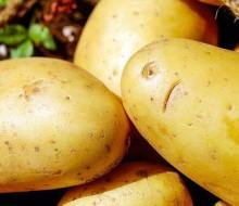 Tipos de patatas y aplicaciones en la cocina