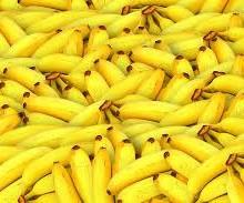 Todo lo que hay que saber del plátano