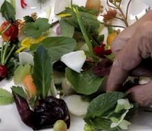 Los 100 mejores chefs del mundo