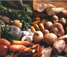 Alimentos de Ida y Vuelta